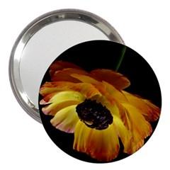 Ranunculus Yellow Orange Blossom 3  Handbag Mirrors by Nexatart