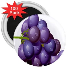 Grape Fruit 3  Magnets (100 Pack) by Mariart