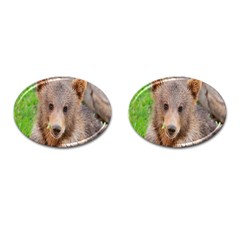 Baby Bear Animals Cufflinks (oval) by Mariart