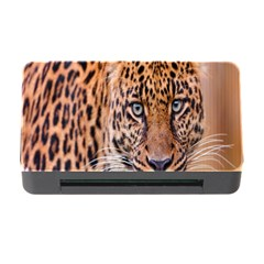 Tiger Beetle Lion Tiger Animals Leopard Memory Card Reader With Cf by Mariart