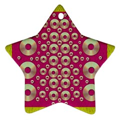 Going Gold Or Metal On Fern Pop Art Star Ornament (two Sides) by pepitasart