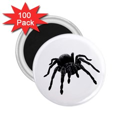 Tarantula 2 25  Magnets (100 Pack)  by Valentinaart