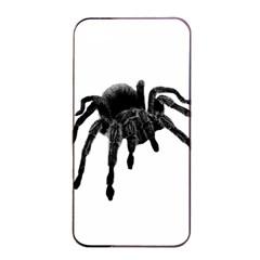 Tarantula Apple Iphone 4/4s Seamless Case (black) by Valentinaart