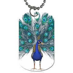 Peacock Bird Peacock Feathers Dog Tag (two Sides) by Onesevenart