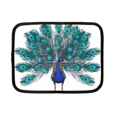 Peacock Bird Peacock Feathers Netbook Case (small)  by Onesevenart