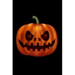 Halloween Pumpkin 5 5  X 8 5  Notebooks by Valentinaart