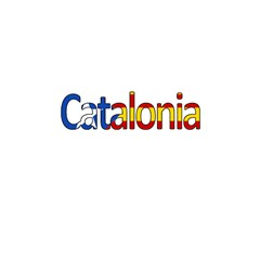 Catalonia Shower Curtain 48  X 72  (small)  by Valentinaart