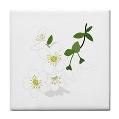Flower Floral Sakura Tile Coasters by AnjaniArt
