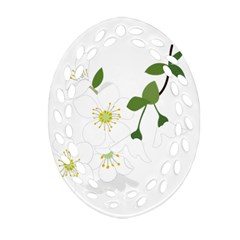 Flower Floral Sakura Oval Filigree Ornament (two Sides) by AnjaniArt