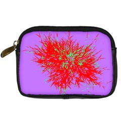 Spot Paint Red Green Purple Sexy Digital Camera Cases by AnjaniArt