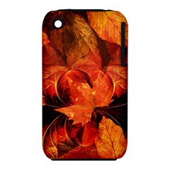 Ablaze With Beautiful Fractal Fall Colors Iphone 3s/3gs by jayaprime