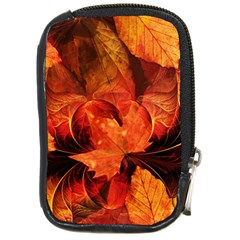 Ablaze With Beautiful Fractal Fall Colors Compact Camera Cases by jayaprime