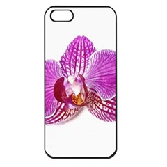 Lilac Phalaenopsis Aquarel  Watercolor Art Painting Apple Iphone 5 Seamless Case (black) by picsaspassion