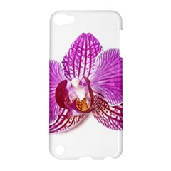 Lilac Phalaenopsis Aquarel  Watercolor Art Painting Apple Ipod Touch 5 Hardshell Case by picsaspassion