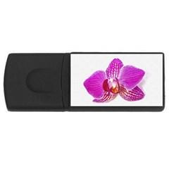 Lilac Phalaenopsis Flower, Floral Oil Painting Art Rectangular Usb Flash Drive by picsaspassion