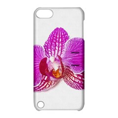 Lilac Phalaenopsis Flower, Floral Oil Painting Art Apple Ipod Touch 5 Hardshell Case With Stand by picsaspassion