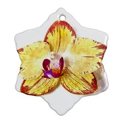 Yellow Phalaenopsis Flower, Floral Aquarel Watercolor Painting Art Snowflake Ornament (two Sides) by picsaspassion