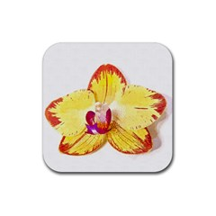Phalaenopsis Yellow Flower, Floral Oil Painting Art Rubber Coaster (square)  by picsaspassion