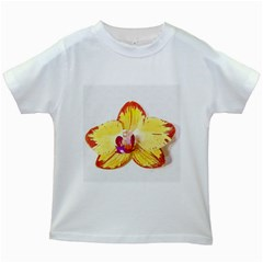 Phalaenopsis Yellow Flower, Floral Oil Painting Art Kids White T Shirts by picsaspassion