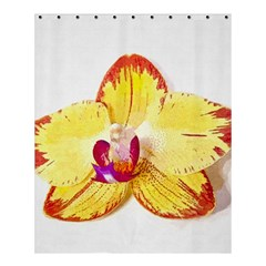 Phalaenopsis Yellow Flower, Floral Oil Painting Art Shower Curtain 60  X 72  (medium)  by picsaspassion