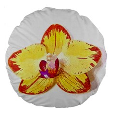 Phalaenopsis Yellow Flower, Floral Oil Painting Art Large 18  Premium Flano Round Cushions by picsaspassion