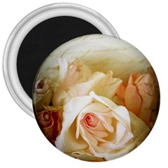 Roses Vintage Playful Romantic 3  Magnets by Celenk
