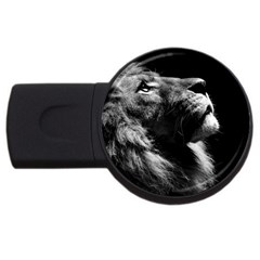 Male Lion Face Usb Flash Drive Round (2 Gb) by Celenk
