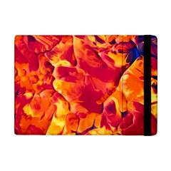 Abstract Acryl Art Apple Ipad Mini Flip Case by tarastyle
