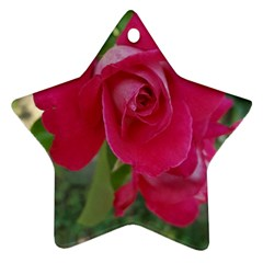 Romantic Red Rose Photography Star Ornament (two Sides) by yoursparklingshop