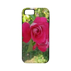 Romantic Red Rose Photography Apple Iphone 5 Classic Hardshell Case (pc+silicone) by yoursparklingshop