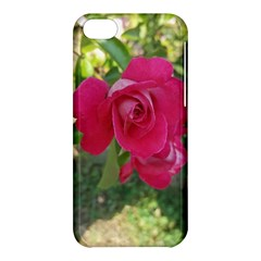 Romantic Red Rose Photography Apple Iphone 5c Hardshell Case by yoursparklingshop