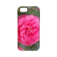 Pink Flower Japanese Tea Rose Floral Design Apple Iphone 5 Classic Hardshell Case (pc+silicone) by yoursparklingshop