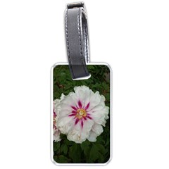 Floral Soft Pink Flower Photography Peony Rose Luggage Tags (one Side)  by yoursparklingshop
