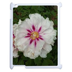 Floral Soft Pink Flower Photography Peony Rose Apple Ipad 2 Case (white) by yoursparklingshop