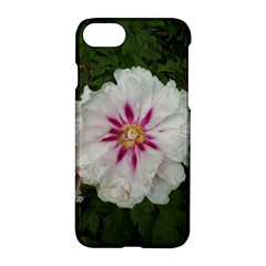 Floral Soft Pink Flower Photography Peony Rose Apple Iphone 7 Hardshell Case by yoursparklingshop