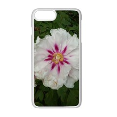 Floral Soft Pink Flower Photography Peony Rose Apple Iphone 8 Plus Seamless Case (white) by yoursparklingshop