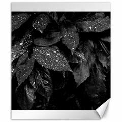 Black And White Leaves Photo Canvas 20  X 24   by dflcprintsclothing