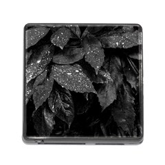 Black And White Leaves Photo Memory Card Reader (square) by dflcprintsclothing