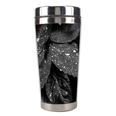 Black And White Leaves Photo Stainless Steel Travel Tumblers by dflcprintsclothing