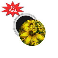 Beautiful Yellow Green Meadow Of Daffodil Flowers 1 75  Magnets (10 Pack)  by jayaprime