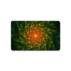 Beautiful Orange Green Desert Cactus Fractalspiral Magnet (name Card) by beautifulfractals