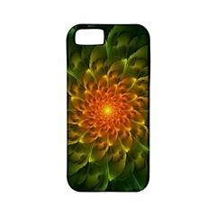 Beautiful Orange Green Desert Cactus Fractalspiral Apple Iphone 5 Classic Hardshell Case (pc+silicone) by beautifulfractals