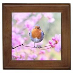 Spring Bird Bird Spring Robin Framed Tiles by Celenk
