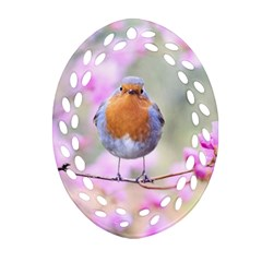 Spring Bird Bird Spring Robin Oval Filigree Ornament (two Sides) by Celenk