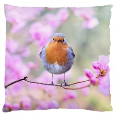 Spring Bird Bird Spring Robin Large Flano Cushion Case (two Sides) by Celenk