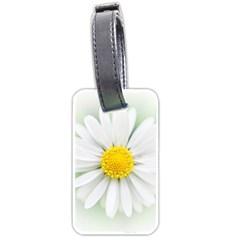 Art Daisy Flower Art Flower Deco Luggage Tags (one Side)  by Celenk