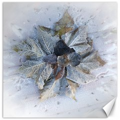 Winter Frost Ice Sheet Leaves Canvas 12  X 12   by Celenk