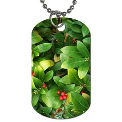 Christmas Season Floral Green Red Skimmia Flower Dog Tag (two Sides) by yoursparklingshop