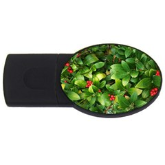Christmas Season Floral Green Red Skimmia Flower Usb Flash Drive Oval (2 Gb) by yoursparklingshop