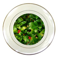 Christmas Season Floral Green Red Skimmia Flower Porcelain Plates by yoursparklingshop
